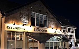 the unicorn pub limerick